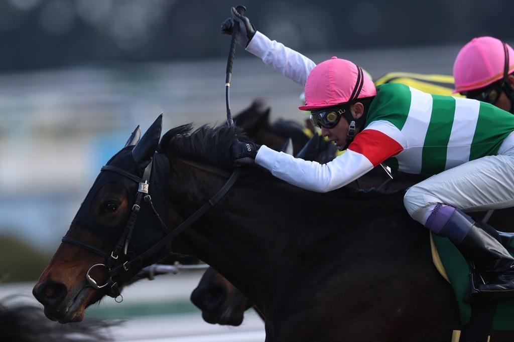 2018年2月17日 京都牝馬S(GⅢ)_f0204898_23350682.jpg