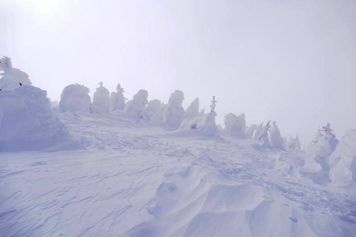 山形県山形市蔵王温泉スキー場    地蔵山頂付近 「樹 氷」_d0106628_10161210.jpg