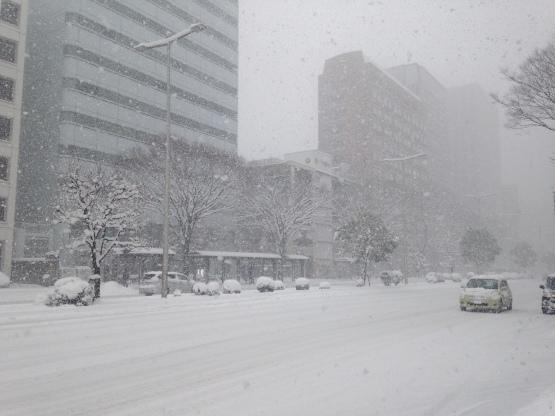 2月11日(日)ご来店♪~大雪_b0206845_15154600.jpg