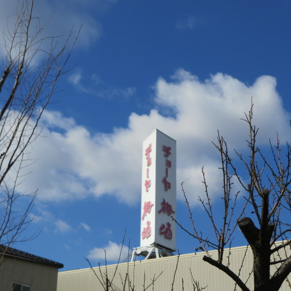 CHOYAの本社周辺をちょっと歩いただけの奈良県人  羽曳野市_c0001670_19364377.jpg