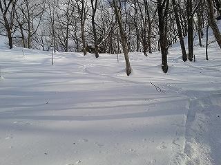 スキーシューって知ってます?_e0064783_22061280.jpg
