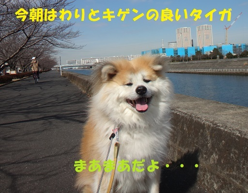 f0121712_15301951.jpg