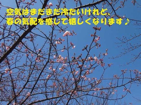 f0121712_15373447.jpg