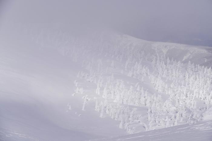 山形県山形市蔵王温泉スキー場  地蔵山山頂  ~ ゴンドラ駅 「樹 氷」_d0106628_11595920.jpg
