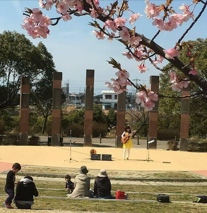 農業文化園・戸田川緑地 さくらまつり2018_f0373339_14173554.jpg