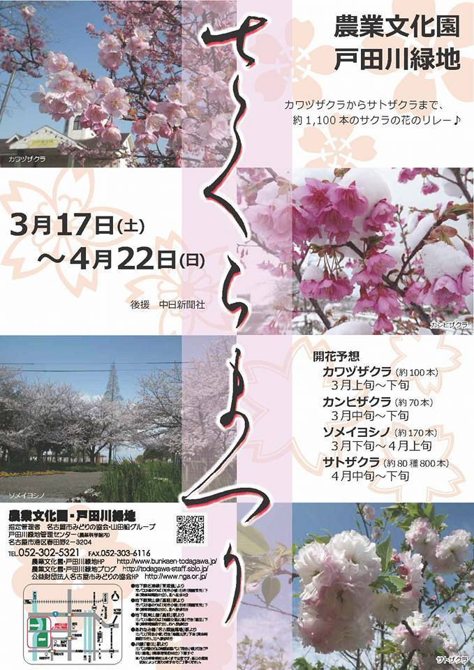 農業文化園・戸田川緑地 さくらまつり2018_f0373339_14173588.jpg