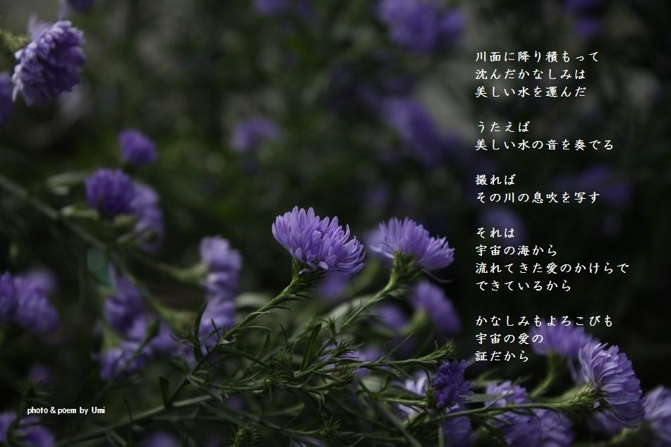 f0351844_15202090.jpg