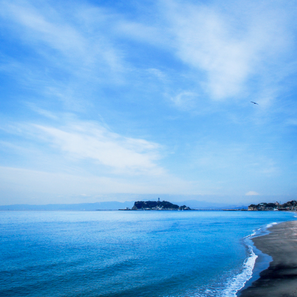 七里ヶ浜の風景・2月19日篇。_b0022268_18312520.jpg