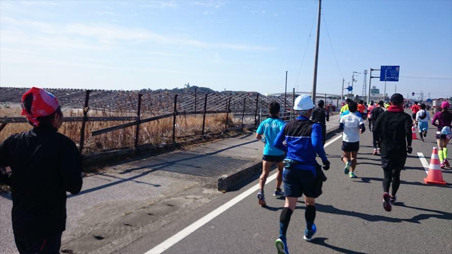 高知龍馬マラソン2018に参加しました_e0201281_22284127.jpg