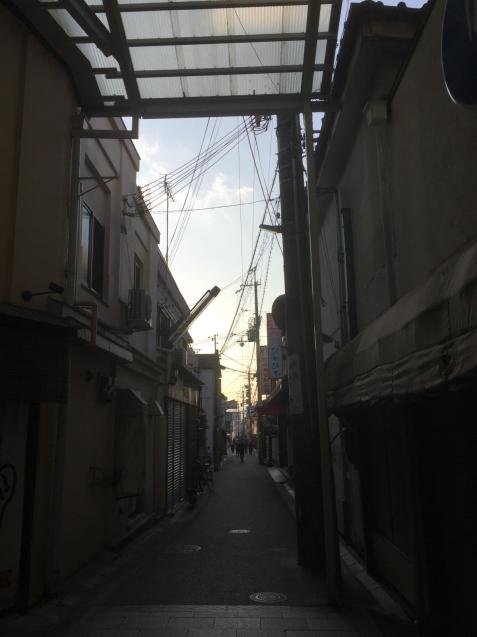 奈良の街  それから住吉大社 五大力の石_c0180209_20120142.jpg