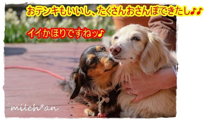 b0115642_18322738.jpg