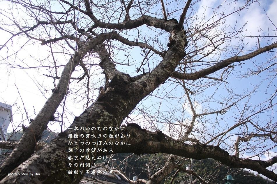 f0351844_15485727.jpg