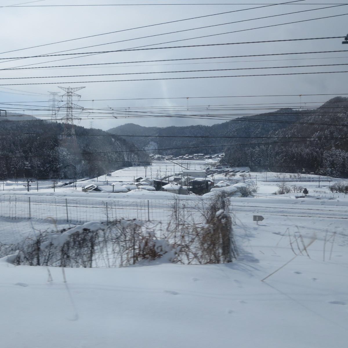 突然ですが雪景色でお楽しみください_c0001670_20495590.jpg