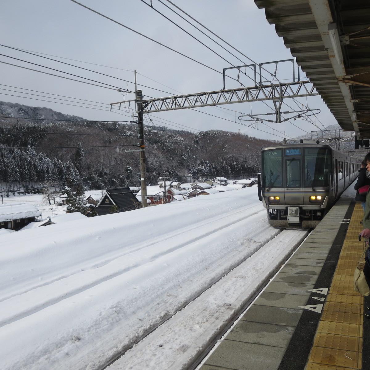 突然ですが雪景色でお楽しみください_c0001670_20511019.jpg
