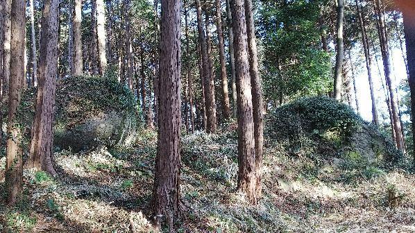 近くの浅間神社_e0303187_18505216.jpg