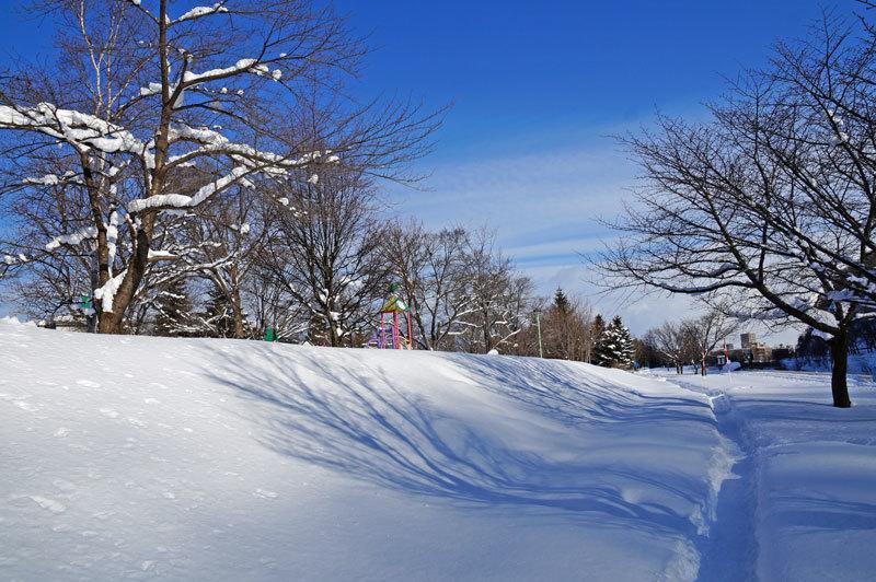 雪景色_d0162994_11050370.jpg