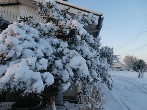 2018年2月24日 土浦市乙戸町6班の1新年会  その12_d0249595_19033256.jpg