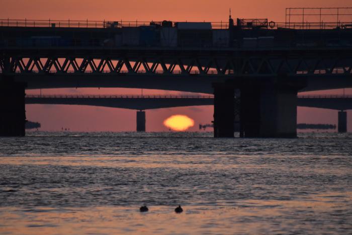 水平線から日の出だよ! そして、春 (*^_^*)_c0049299_22373678.jpg