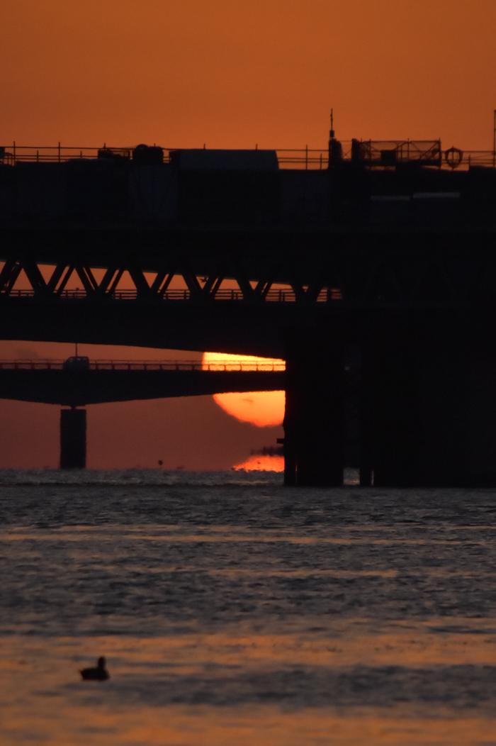 水平線から日の出だよ! そして、春 (*^_^*)_c0049299_22444418.jpg