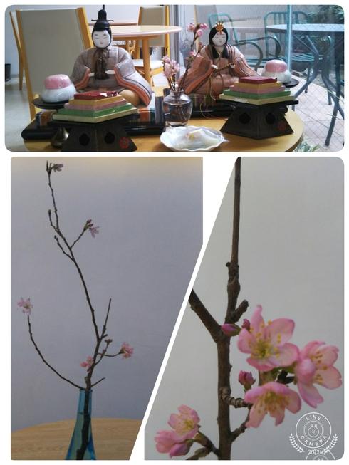 桜咲く_a0106637_123132.jpg