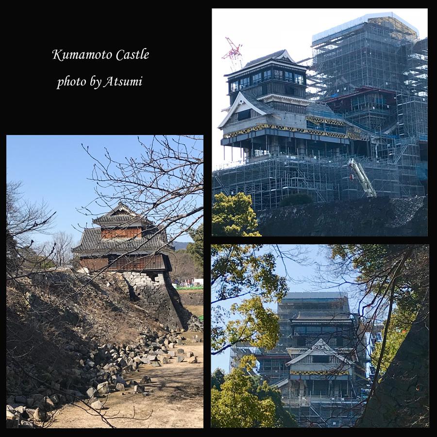熊本へ_b0270372_03263406.jpg