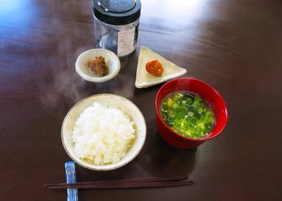 ライスと麻婆豆腐_a0258686_01334527.jpg