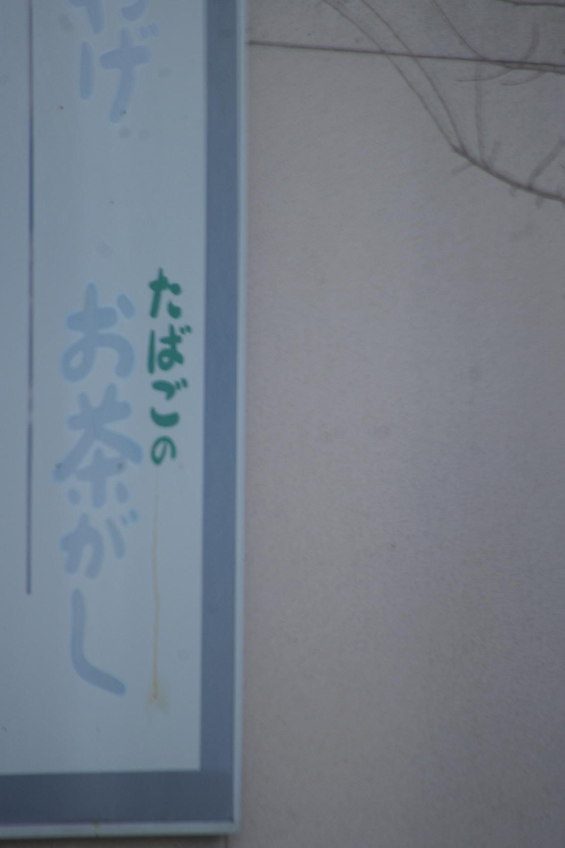 c0337494_16045910.jpg