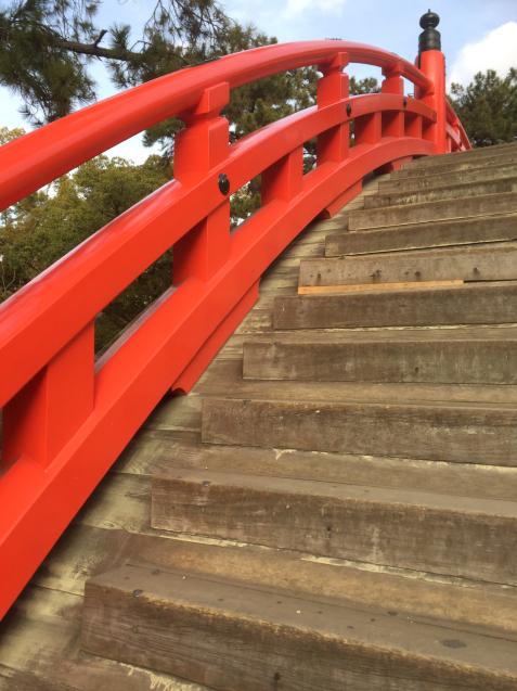 奈良 ならまち 住吉大社 東大寺 おおきな木_c0180209_20572879.jpg