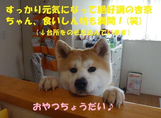 f0121712_08543714.jpg