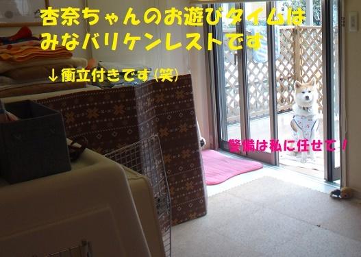 f0121712_09014821.jpg