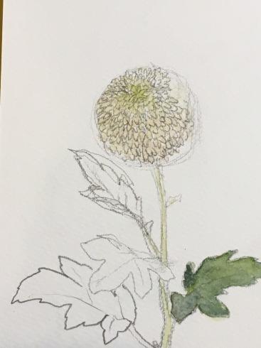 日本画教室。講師募集。_c0160745_12481162.jpg