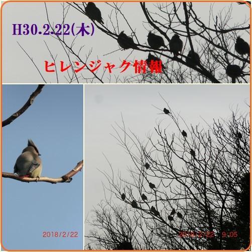 d0007071_14232957.jpg