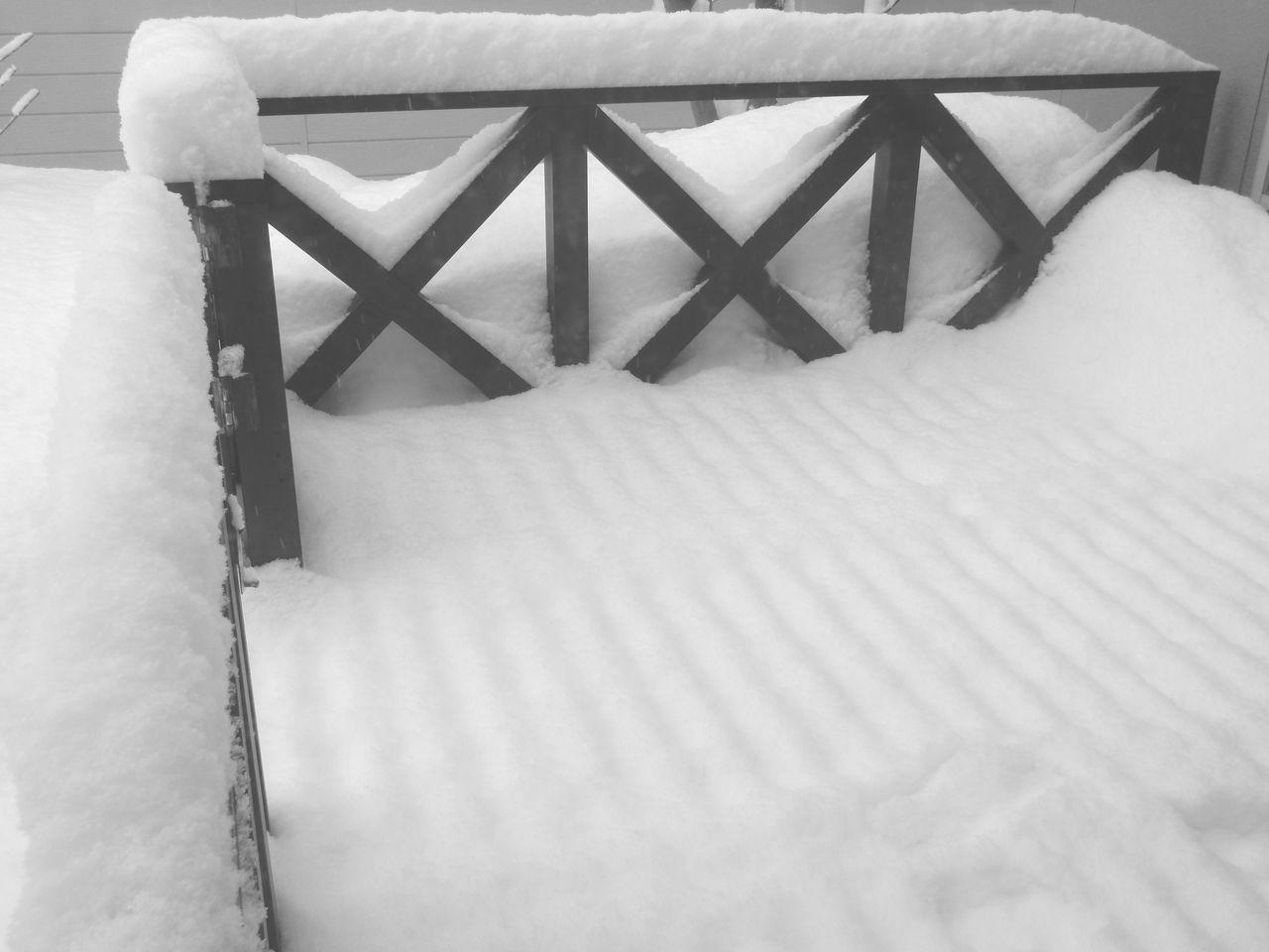 綿菓子のような雪の後、最高気温4.4℃_c0025115_21294428.jpg