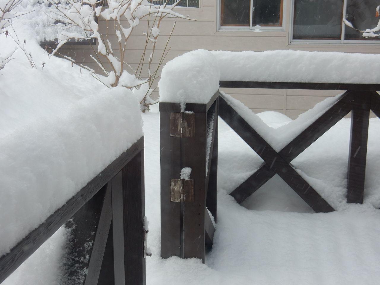 綿菓子のような雪の後、最高気温4.4℃_c0025115_21300411.jpg