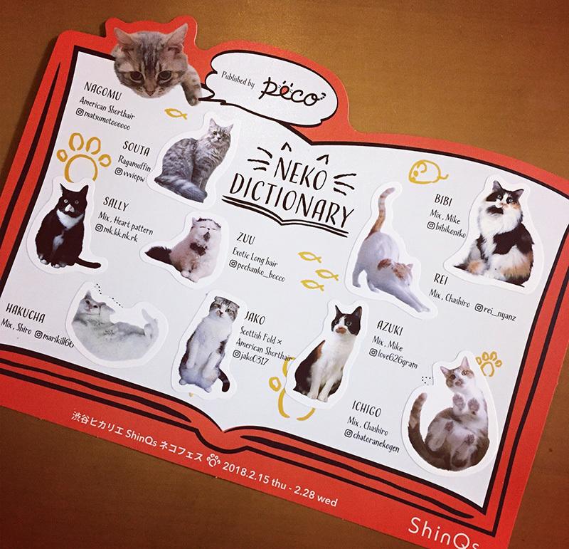 猫の日。ヒカリエが猫だらけ。_a0021523_01165998.jpg