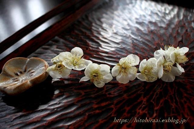 北鎌倉 幻董庵_f0374092_15421826.jpg