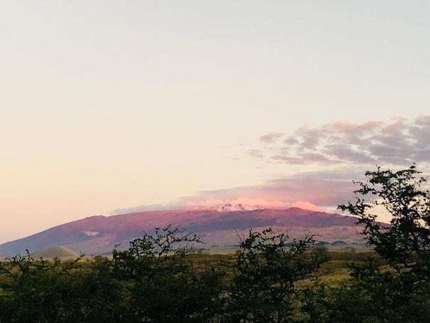 大自然のハワイ島〜♪_c0187025_11211472.jpg