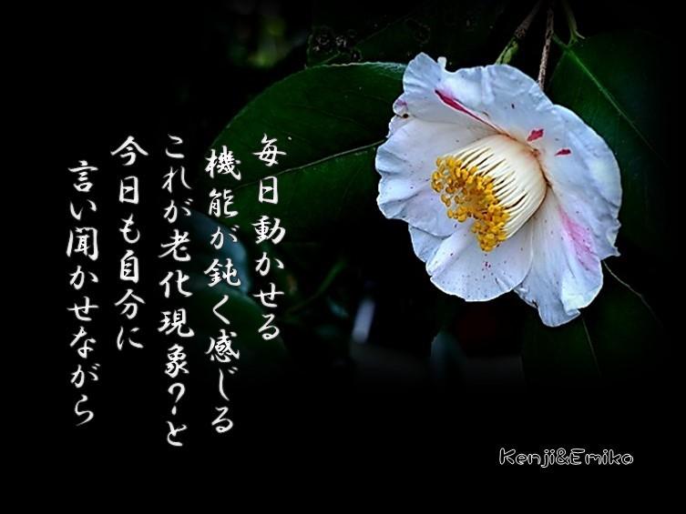 f0214467_10063220.jpg