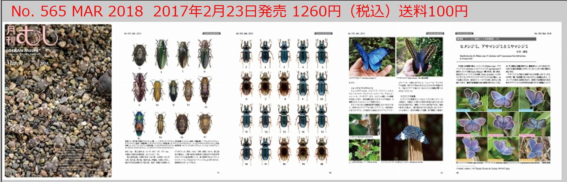 近縁種(16)と春のつどいの案内_a0146869_08292363.jpg
