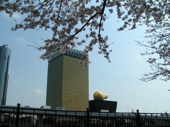 墨田公園で花見!_a0268377_21072398.jpg
