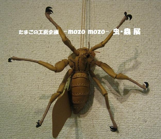 たまごの工房企画 -mozo mozo- 虫・蟲 展 その4_e0134502_15184720.jpg