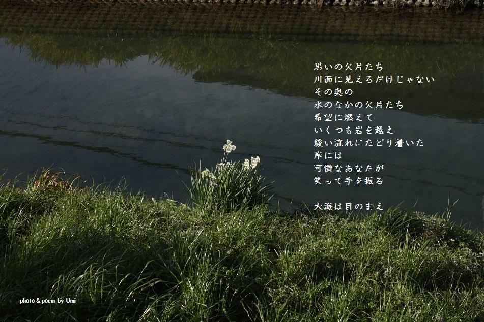 f0351844_13482143.jpg
