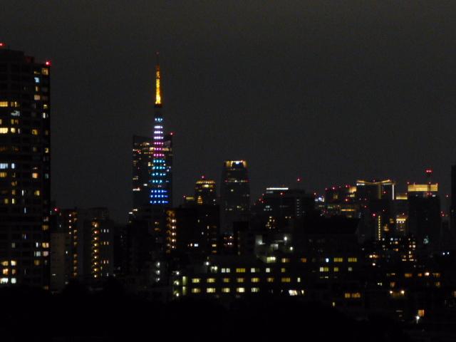 今夜の東京タワー_c0100865_18045556.jpg