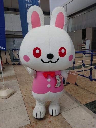 東京マラソン、ボランティア説明会&ランナーズエキスポ_c0100865_21304140.jpg