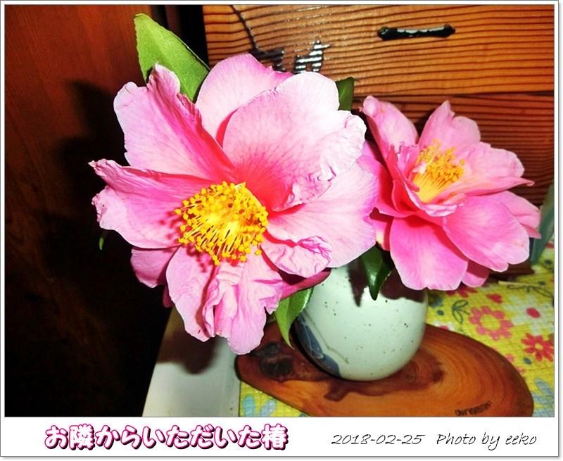 f0104569_20115299.jpg