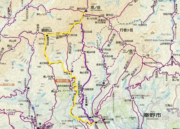 雪のない山レポート~2月の丹沢_d0198793_15065060.jpg