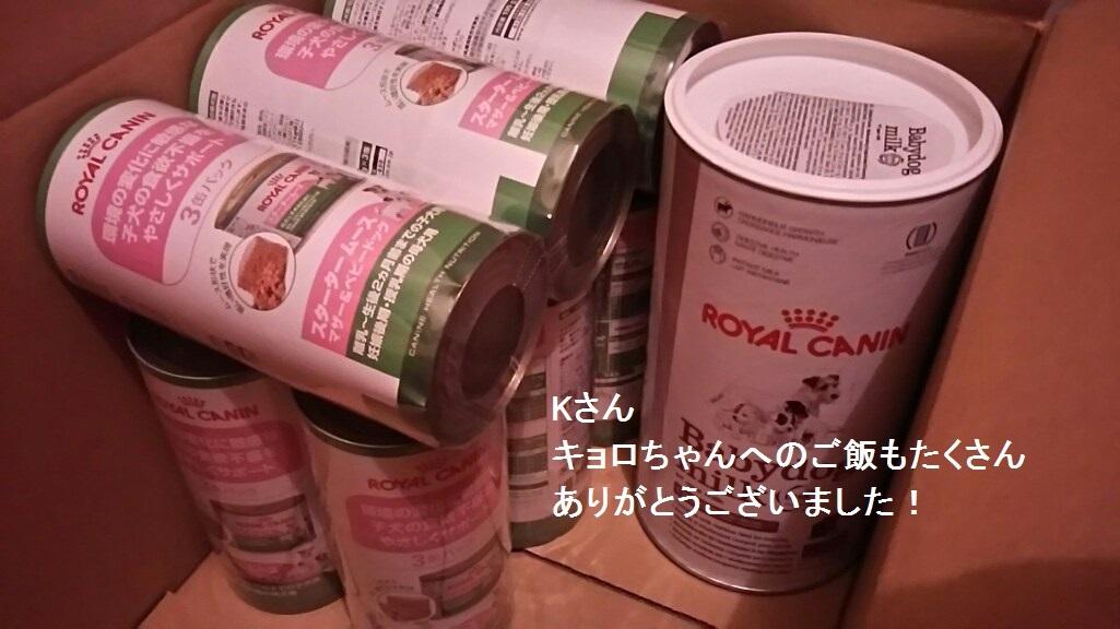 ミルクと栄養食のご支援、ありがとうございました!!_f0242002_10162921.jpg