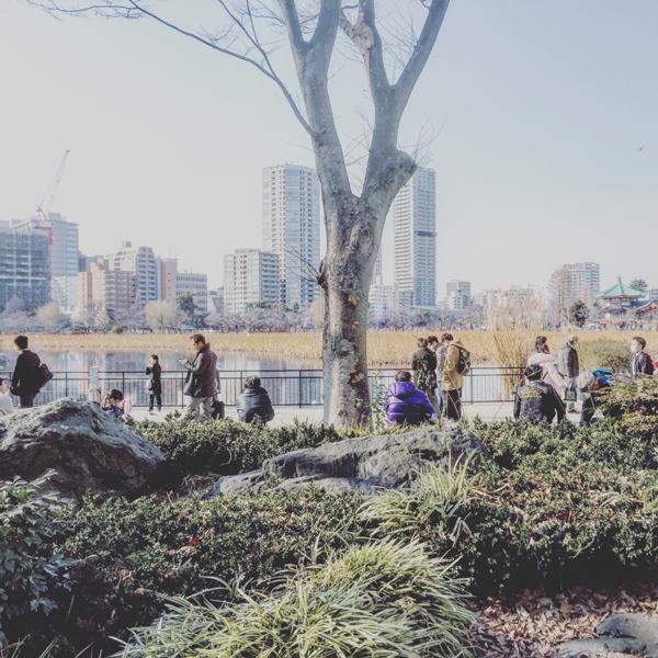 上野恩賜公園 / iPhone 6_c0334533_09434131.jpg
