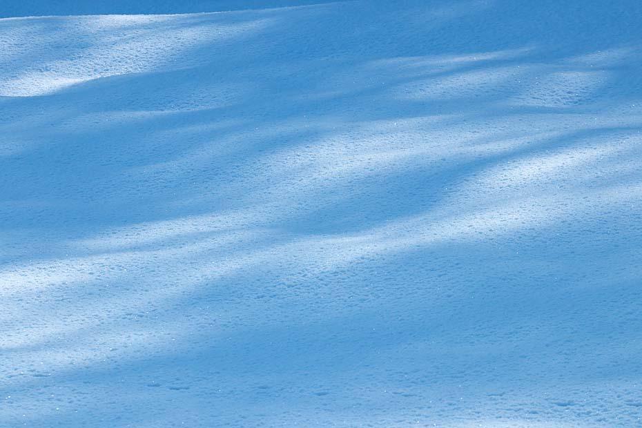 Winter Blue \'18  #4_c0067040_18531889.jpg