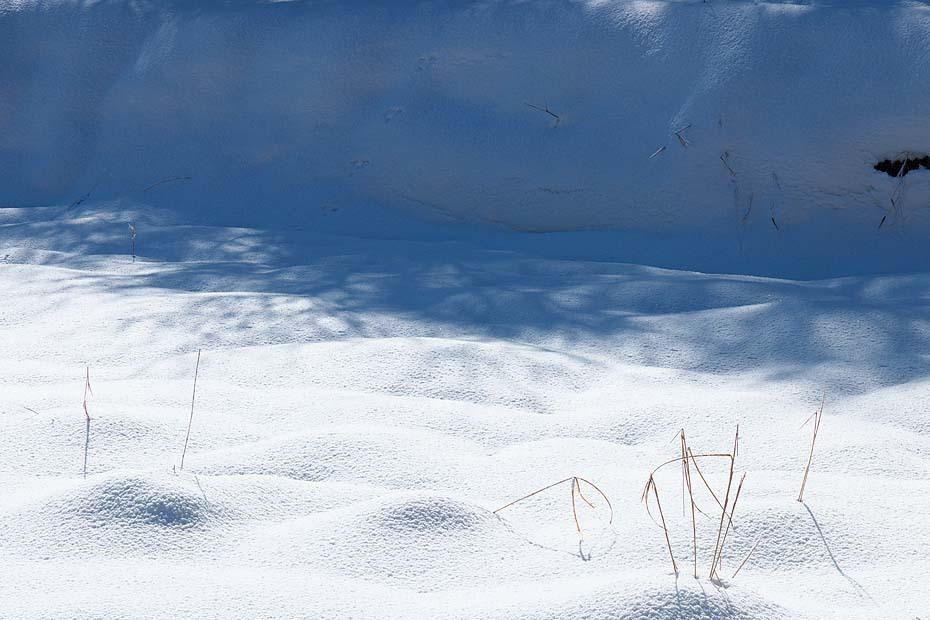 Winter Blue \'18  #4_c0067040_18533638.jpg